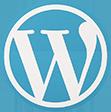 Hire Top Wordpress Developers